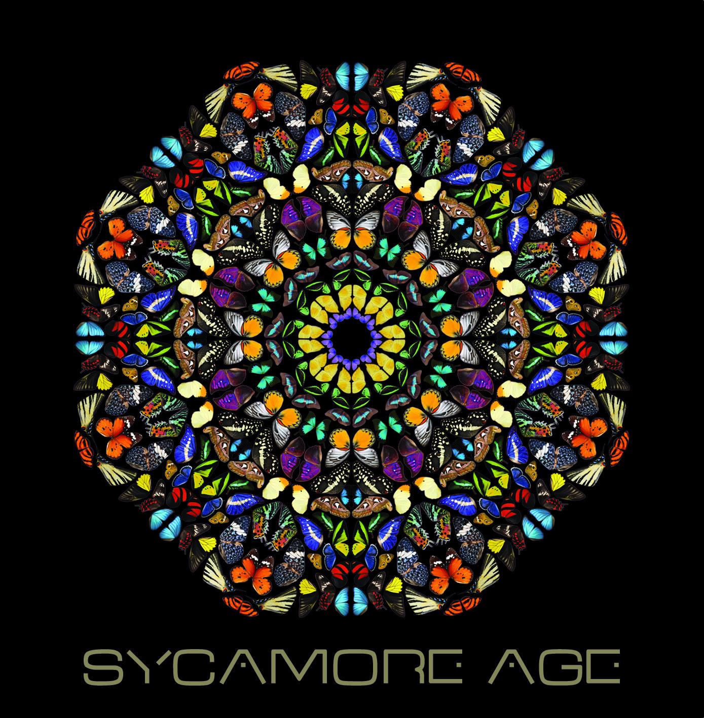 SYCAMORE AGE // Premier album à paraitre le 10 juin chez Rough Trade/Differ-Ant